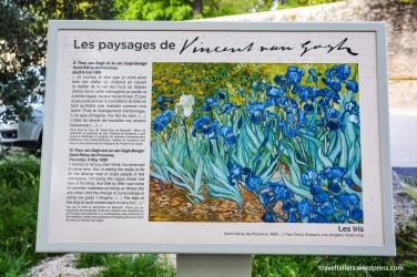 037_Van Gogh walk-2