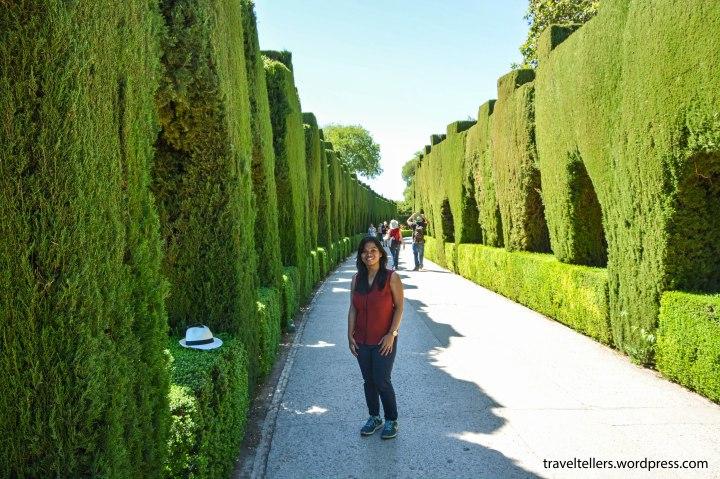 037_alhambra_paseo-de-generalife-2